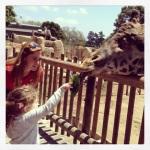 Maya feeding a Masai..