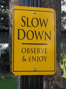 Slow_down_sign,_Reed_College,_Portland,_Oregon_(2013)