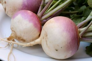 Am I a turnip?