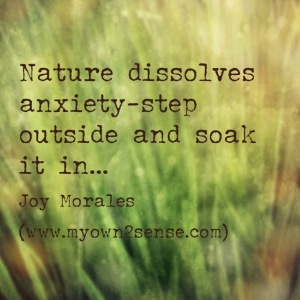 Nature dissolves anxiety