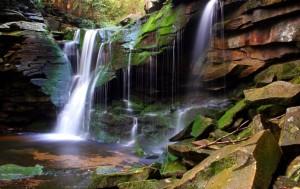 Magical_elakala-waterfall-2_ForestWander